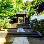 Main Gate of Shozokuin in Engakuji Temple, Kamakura : 北鎌倉・円覚寺正続院 thumbnail