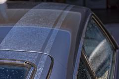 1971 240z (djerniganphoto) Tags: 240z datsun driving details roadtrip ratsun rims racing resto reflections california cars classic car cruising carshow nikon nissan northwest