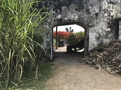 (heatheronhertravels) Tags: grenada caribbean rume
