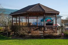 MacGregor Bandstand (Bracus Triticum) Tags: macgregor bandstand マニトバ州 manitoba canada カナダ 5月 五月 早月 gogatsu satsuki fastmonth 2018 平成30年 summer may