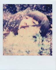 Chizuko in dreams . (Akio Nakai 中飯明央) Tags: polaroid polaroidsx70 portrait instantfilm