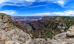 DSC_0471-Pano.jpg (David Hamments) Tags: grandcanyonnationalpark arizona verticalpanorama southrim day2