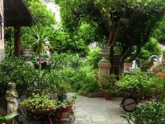 corte sconta (fotomie2009) Tags: garden giardino courtyard finale finalborgo finaleligure liguria rivieradiponente riviera ligure cortile
