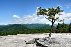 View from Wolf Rock (esywlkr) Tags: stonemountainstatepark nc wnc northcarolina nature outdoors landscape mountains