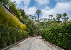 Beverly Hills, California (ChrisGoldNY) Tags: chrisgold chrisgoldny chrisgoldphoto chrisgoldberg licensing forsale bookcover albumcover losangeles laist la socal cali california southern beverlyhills sonyimages sonyalpha sonya7rii raw slr