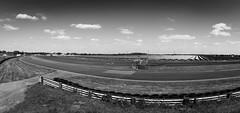 JapDay 2016 (myfrozenlife) Tags: track japanese japmotorsport motorsport japday aerialphotos canon carshow jdm racetrack motorshow cars castlecombe england unitedkingdom gb