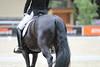 _MG_7932 (dreiwn) Tags: dressage dressur dressuur pferd reitturnier turnierreiten pferdesport horse horseback horseriding equestrian reitverein dressurprüfung kandare doublebridle reiten pferde reitplatz ridingarena