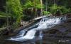 Liffey Cascades (R. Francis) Tags: liffeyfalls liffeyriver liffeycascades tas tasmanianhighlands tasmania waterfall river ferns