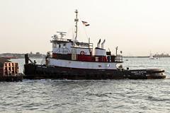 r_180608212_beat0048_a (Mitch Waxman) Tags: brooklyn eastrivershoreline newyorkcity newyorkharbor tugboat newyork