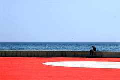 Una rotonda sul mare (meghimeg) Tags: 2018 sanremo mare sea cielo sky uccello uomo man bird rosso rotondo red acqua water scogli rocks muro wall