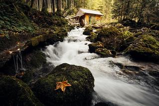 Gollinger Wassermühle
