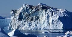 To last (little_frank) Tags: ilulissaticefjord greenland nature ice iceberg landscape scenery view panorama coast fjord sea ilulissatkangerlua wild wilderness cliff cold sunny summer exploring unescoworldheritagesite diskobay