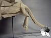 Luster Dragon (Rydos) Tags: paper origami art hanji koreanpaper korean origamist koreanorigamist paperfold fold folding paperfolding designed design model papermodel korea origamilst white lee in seop leeinseop luster dragon lusterdragon
