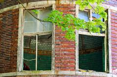 Abandoned (HWW) (KPPG) Tags: abandoned verlassen fenster hww windows architektur architecture beelitz deutschland germany ruin ruine