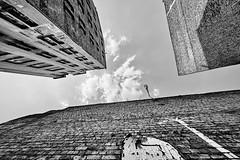 Mannheim Jungbusch 80 b&w (rainerneumann831) Tags: mannheim jungbusch lookup strasenlaterne gebäude architektur bw blackwhite blackandwhite ©rainerneumann