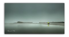 Yellow (RonnieLMills 5 Million Views. Thank You All :)) Tags: thick fog obscure hidden donaghadee harbour harbor lighthouse dog walker bright yellow dayglo jacket dogs county down northern ireland weather