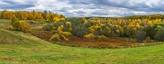 October in Tsaritsyno Park / Октябрь в Царицыно (Vladimir Zhdanov) Tags: nature autumn october landscape sky cloud russia moscow tsaritsyno park forest tree field grass wood road