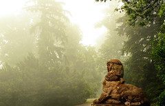 Mystic Fog (Marija Mimica busy!!!) Tags: fog forest tree mist sphinx sculpture pines