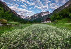 Zadnja Trenta valley (Dreamy Pixel) Tags: alpine alps background bavski beautiful beauty blue building cattle clouds cottages flowers forest grass grintavec holiday homestead house hut julian landscape limestone meadow mountain mountains national natural nature nobody old outdoor outdoors park people red road rock sky slovenia spring summer summit travel trenta triglav vacation valley village wooden zadnja