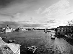 Fly fly away (Petr Horak) Tags: vltava river water praha czechia cze city capital prague europe