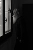 guardando il giardino innevato attraverso la veneziana (mjwpix) Tags: cosimomatteini guardandoilgiardinoinnevatoattraversolaveneziana michaeljohnwhite mjwpix ef50mmf14usm canoneos5dmarkiii blackandwhite beard portrait