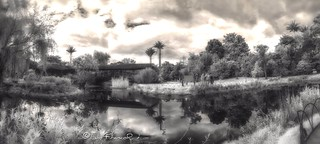 Panoramica lago en infrarrojo 720nm infrared lake view 720nm