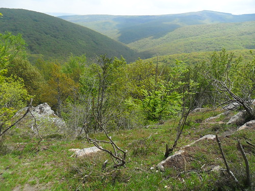 Marcha Senderismo La Inmensidad Del Monte Hijedo Cantabria Fotografia Mercedes Sebastian (13)