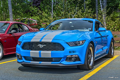 2017 Ford Mustang (kenmojr) Tags: car auto automobile vehicle transportation classic antique vintage halifax jasnow funeral novascotia claytonpark maritimes maritimeprovinces atlantic atlanticprovinces canada easterncanada carshow june 2018 2017 ford mustang hurst