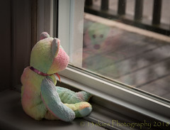 Longing To Go Outside (HTBT) (13skies) Tags: windowlight rainbow multicoloured frontwindow sitting reflection porch longing waiting wanting teddybeartuesday bears happyteddybeartuesday sony railing wet raining sad ledge glass
