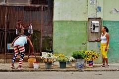 Centro - scène de rue 5 (luco*) Tags: cuba la havane habana havana centro scène de rue street scene femmes women mujeres homme man hombre marché merchant marchande flowers fleurs market