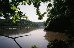 Avon on the path (knautia) Tags: paradisebottom leighwoods bristol england uk may 2018 film ishootfilm olympus xa2 fuji superia 400iso olympusxa2 nxa2roll16 forestrycommission woods arboretum riveravon seamills river avon