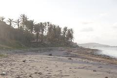 _MG_3384 (diegobianchetti) Tags: nomade travel viajar vidasimples arte simplelife art mochila bicicleta bikepack backpack tortugavoladora biketravel viajeenbici vuelatortuga nordeste brasil