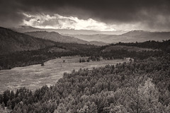 Mount Washburn Bathed In Sunlight (59roadking - Jim Johnston) Tags: ifttt 500px yellowstone mount washburn valley clouds storm sunlight forest monochrome wyoming