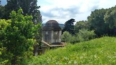 295 - Cap Corse, Rogliano, le cimetière en contrebas de l'église San Martinu (paspog) Tags: corse capcorse france rogliano mai may 2018
