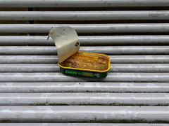 TLOP: JOHN WEST SARDINES (amazingstoker) Tags: john west sardines bench basingstoke amazingstoke basingrad crown heights food abandoned tin can pull ring grey tube