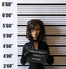 In Custody (MaxxieJames) Tags: selina kyle catwoman barbie dc dcu batman custom ooak doll mattel made move gotham city
