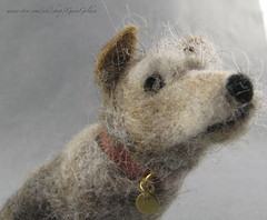 Terrier May 2018 (GaiaGolden) Tags: terrier needle felted felt wool needlefelt dog doggy old small miniature sculpture pet portrait close up face
