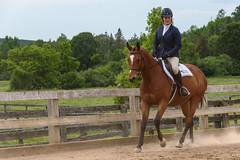 JBC_5395.jpg (Jim Babbage) Tags: krahc horseshow appaloosa horses 2018 bethany