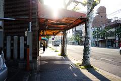 七条千本 (yasu19_67) Tags: sonyα7ilce7 sonnartfe35mmf28za sel35f28z digitaleffects digitalphotography filmlike filmfake backlight sunset atmosphere kyoto japan