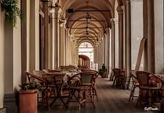 Busseto i portici - The porticoes of Busseto (danilocolombo69) Tags: portici arcate luci sedie bar busseto giuseppeverdi danilocolombo69 danilocolombo nikonclubit tavolini cappuccino caffè