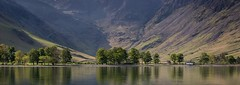 Buttermere Pine Trees (antonyrowlandsphotography.com) Tags: buttermere pinetrees landscapephotography water reflections panorama lakedistrict lightandland