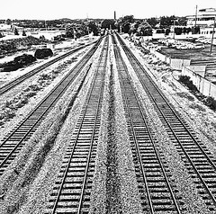 """No Time For Tears"" (Halvorsong) Tags: trains traintrack traintracks industry black white blackwhite blackandwhitephotography bw monochrome composition angles lines art old oldschool nostalgia explore discover america americana nashville railyard wow city urban dream dreams adventure yearning thewest thesouth burlingtonnorthern choochoo"