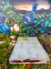The Tui Nest (Steve Taylor (Photography)) Tags: mattress bed tui eggs bird graffiti mural streetart light block wall newzealand nz southisland canterbury christchurch city cbd flora plant bush brick weeds leaves dawn sunrise nest birdnest southernalps