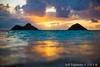 Lanikai Sunrise (j . f o o j) Tags: nikond610 nikkor20mmf28 nikkor50mmf12ais nikkor14mmf28 lanikai lanikaisunrise lanikaibeach hawaii kailua aloha mokuiki mokunui twinislands namokulua
