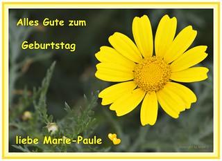 Geburtstagskarte * Birthday card * Tarjeta de cumpleaño *   .  _DSC8476-001