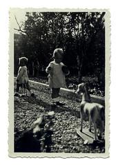 i gemelli a Vicenza - ottobre 1936 (dindolina) Tags: photo fotografia blackandwhite bw biancoenero monochrome monocromo italy italia veneto vicenza family famiglia history storia gemelli twins vignato 1936 1930s annitrenta thirties toy giocattolo cavallo horse giardino garden