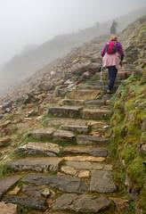 Pyg Trail, Snowdon (dgmann11) Tags: llynpeninsular holidays snowdonia paths mountains walkers