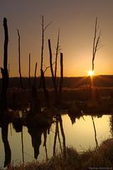 Łysy Młyn - sunrise (damianziel) Tags: pentax pentaxk50 smcpda1855mmf3556alwr landscape poland sunrise yellow colours color colour colorful sunlight reflections reflection nature light landschaft smcpentaxdal1855mmf3556alwr