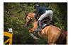 Allez ça passe, pas de pénalité ! (deniscoeur) Tags: jumping chevaux cheval horse équitation équidés équine nikond810 sigma50500mm f4563 béthune photographie photography photographe hautsdefrance nordpasdecalais reflex62 deniscoeurreflex62 deniscoeurphotographe62