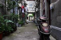Shanghai (NovemberAlex) Tags: colour urban architecture china shanghai